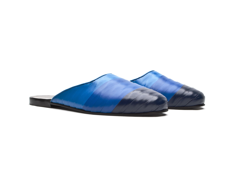 DV065-Blue-Ribbon-Diego-Vanassibara-Q